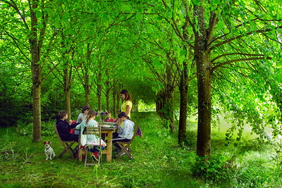 Picnic in Lime Avenue