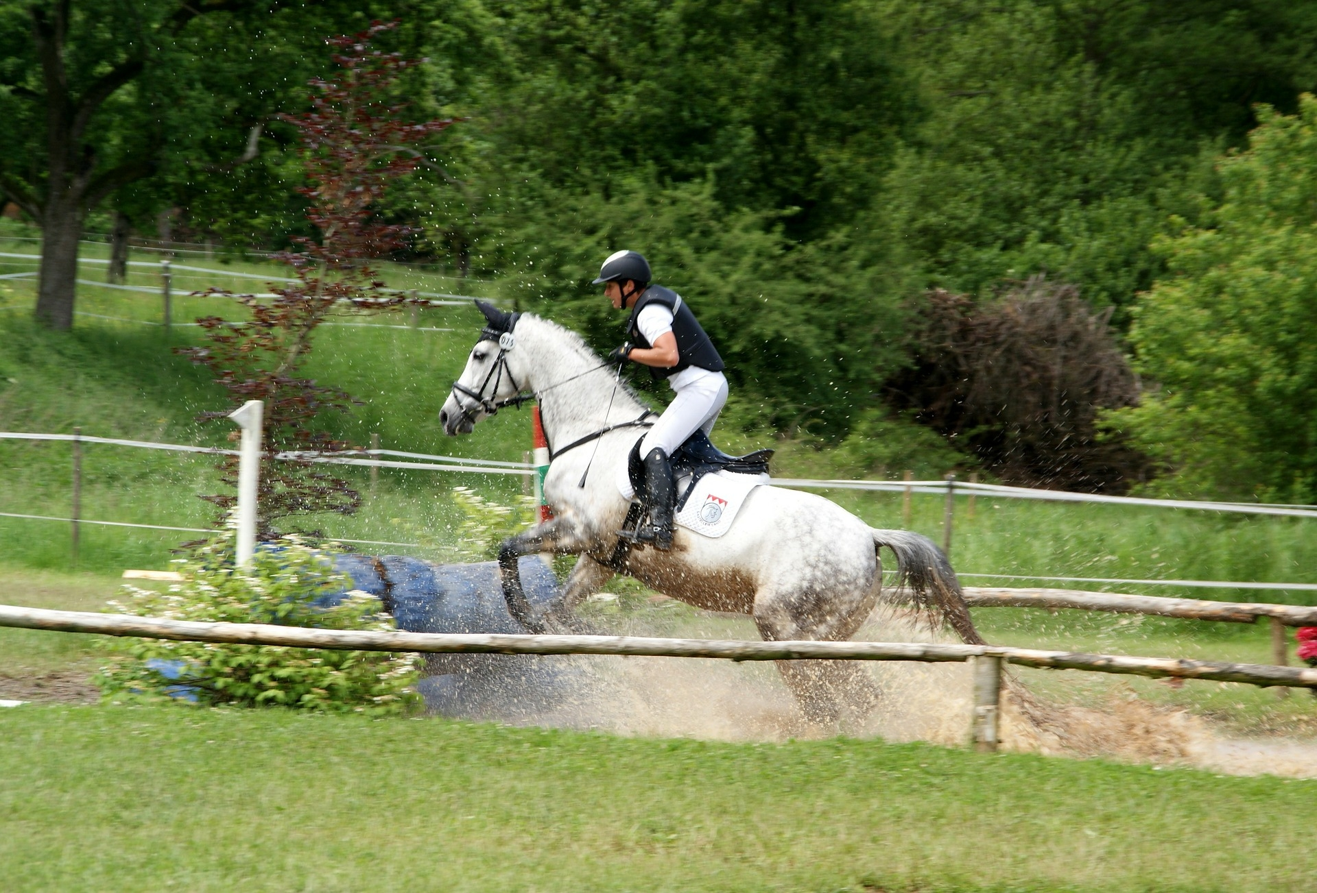 Slieve Bloom Trail Equestrian Centre