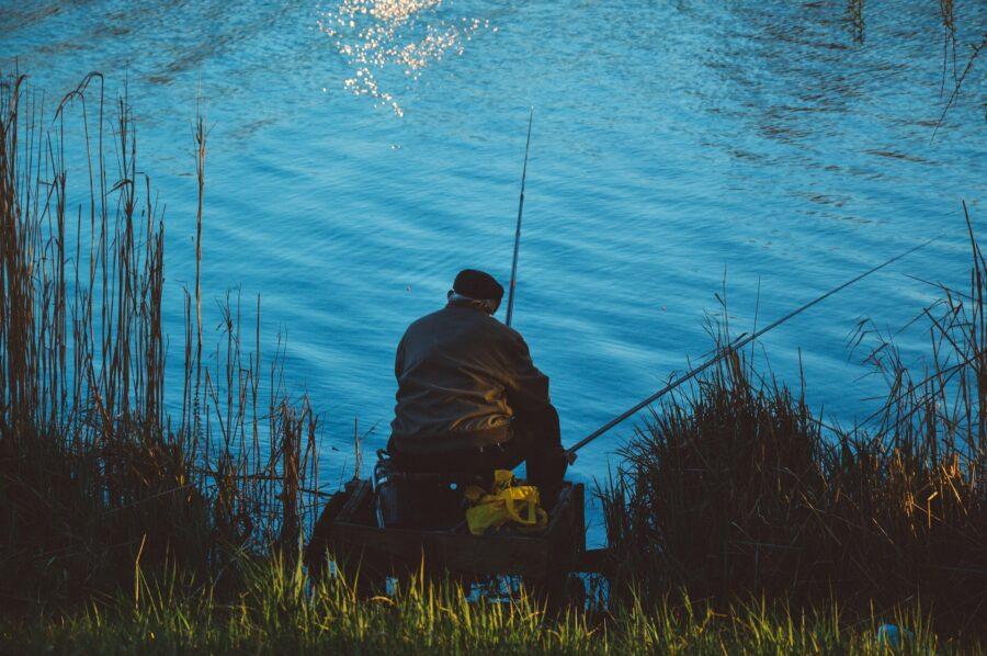 Little Bog Lake