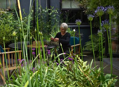 Selous Lodge – Biodiversity Garden