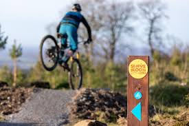 Slieve Bloom Mountain Bike Track