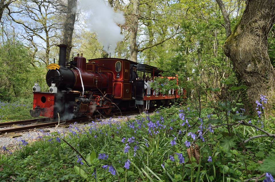 Stradbally Woodlands Express